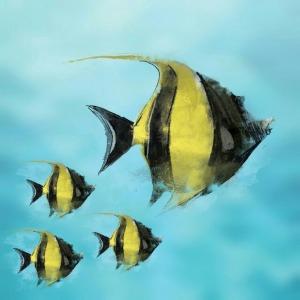 fish-744563_1280